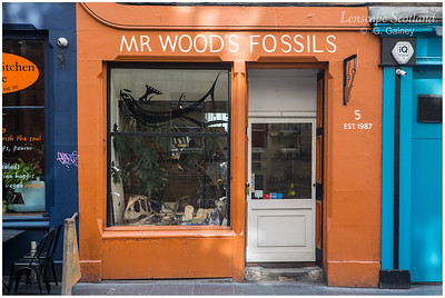 Mr. Wood's Fossil shop, Cowgatehead