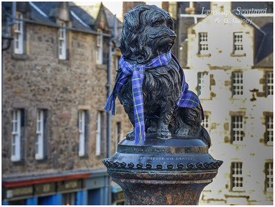 Greyfriars Bobby statue with tartan scarf