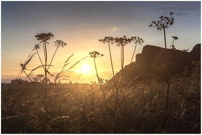 Holyrood Park summer sunset (1)