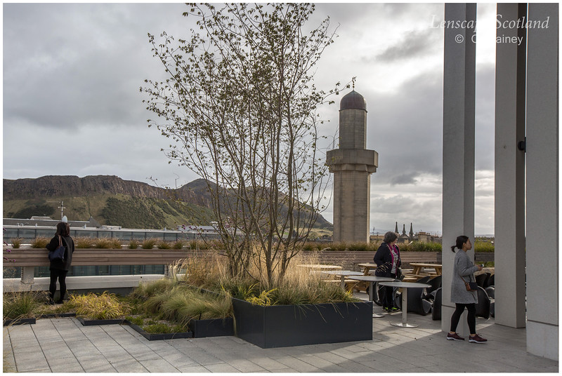 Roof garden of Edinburgh University Informatics Forum