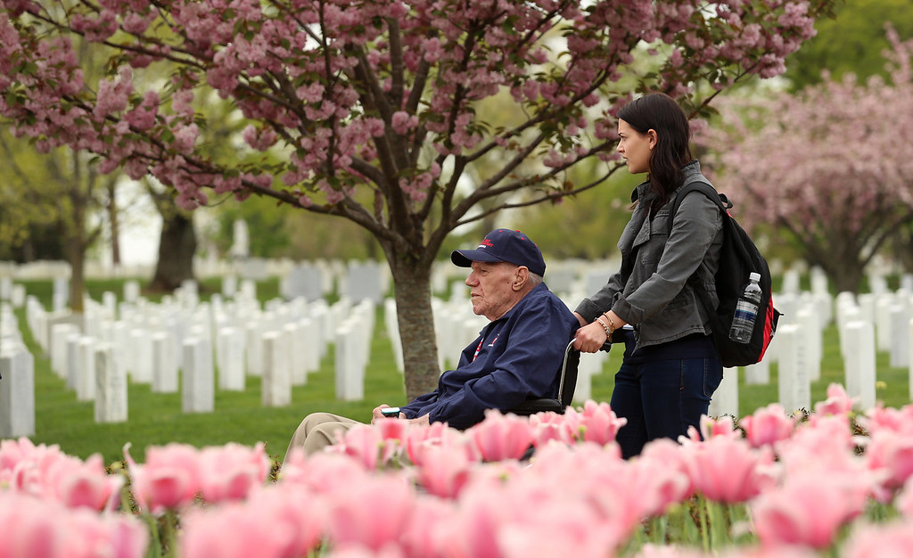 Tulips and WWII veterans