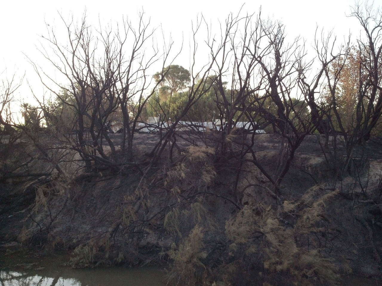 May 24, 2013 Fire Aftermath