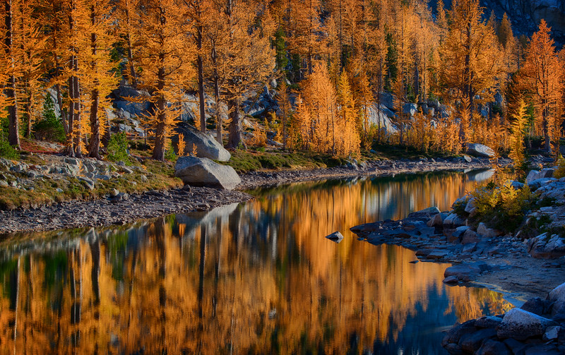 Enchantments Larch Reflections