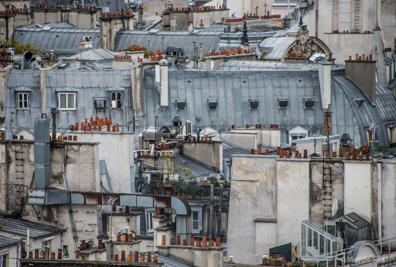 Roof tops near Notre Dame
