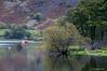 Calm at the end of Ullswater near Glen Ridding