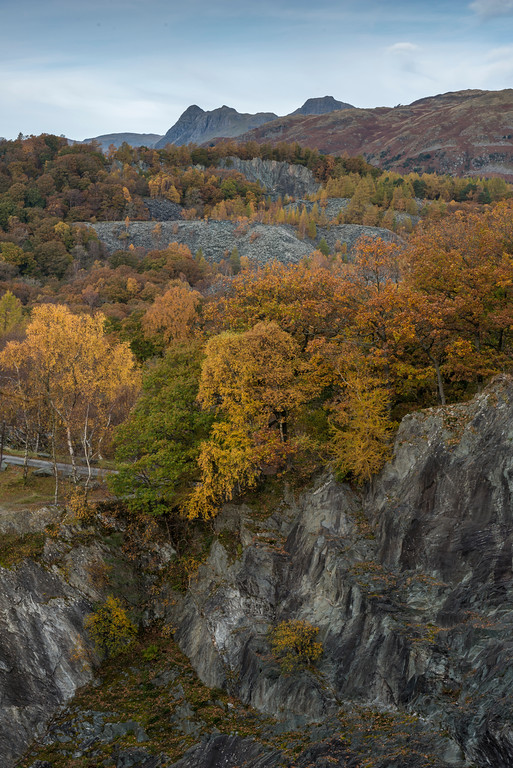 Langdale Pikes from Hodge Close
