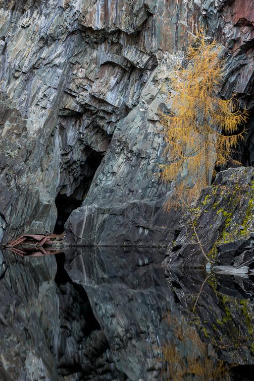 Hodge Close Quarry III