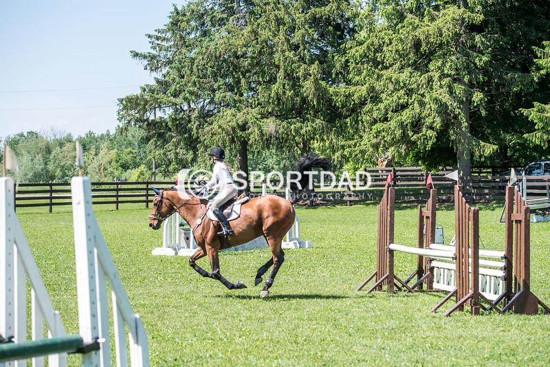 SPORTDAD_equestrian_0829