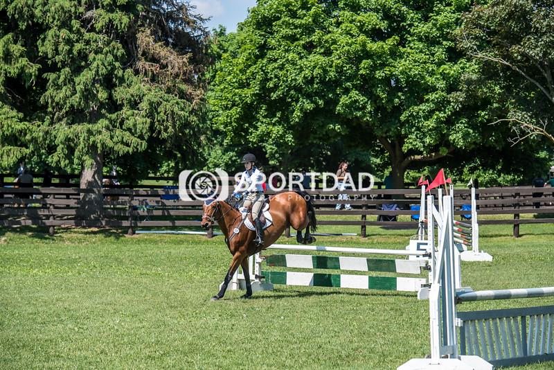 SPORTDAD_equestrian_0822