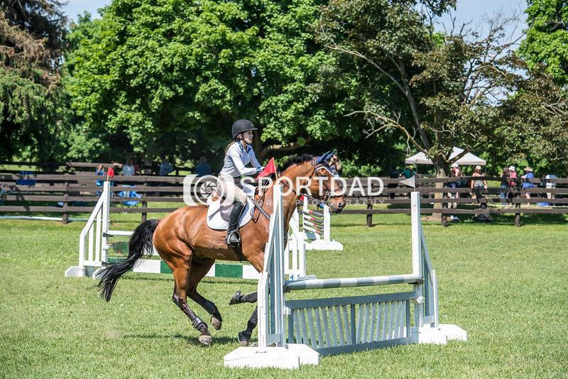 SPORTDAD_equestrian_0831