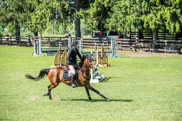 SPORTDAD_equestrian_0566