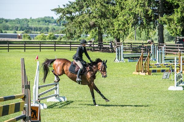 SPORTDAD_equestrian_0561