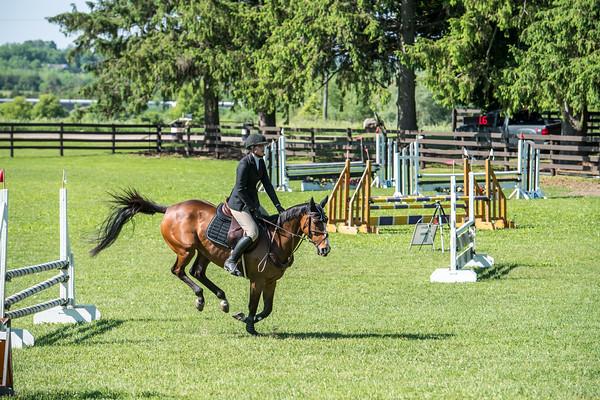 SPORTDAD_equestrian_0563
