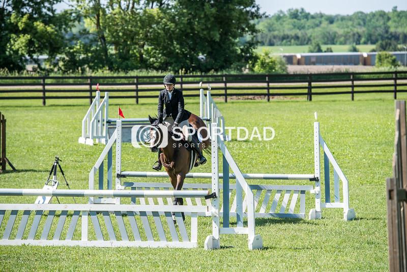 SPORTDAD_equestrian_0579