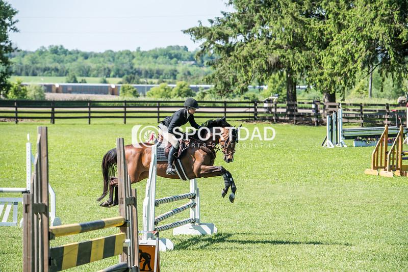 SPORTDAD_equestrian_0559