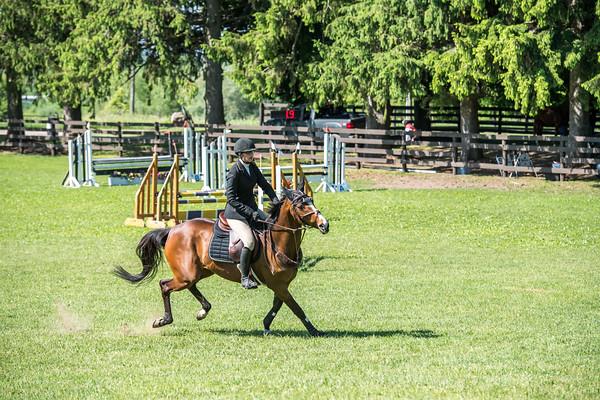 SPORTDAD_equestrian_0567