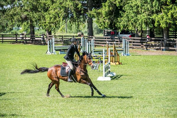 SPORTDAD_equestrian_0565