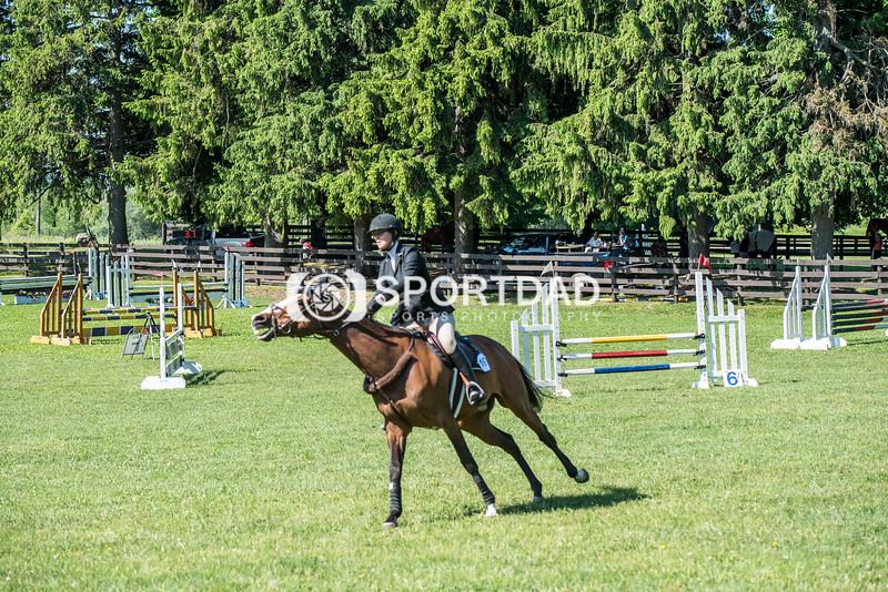 SPORTDAD_equestrian_0571