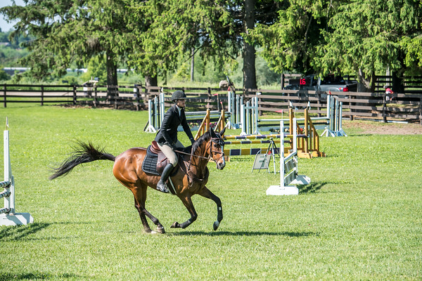 SPORTDAD_equestrian_0564