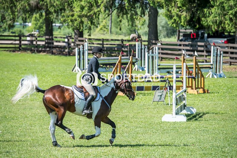 SPORTDAD_equestrian_0727