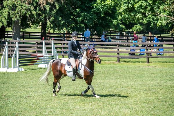 SPORTDAD_equestrian_0736