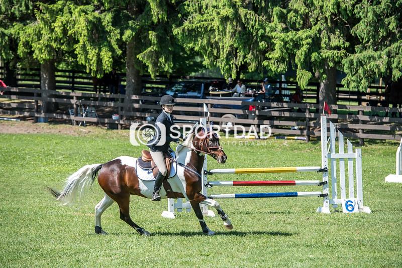 SPORTDAD_equestrian_0732