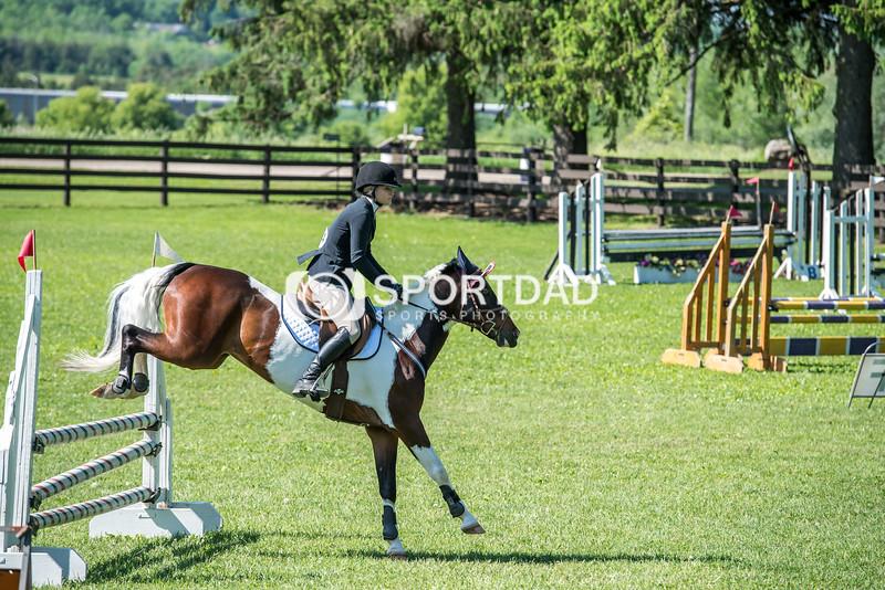 SPORTDAD_equestrian_0724