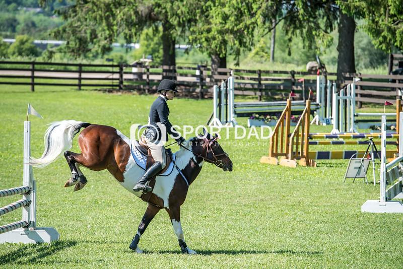 SPORTDAD_equestrian_0725