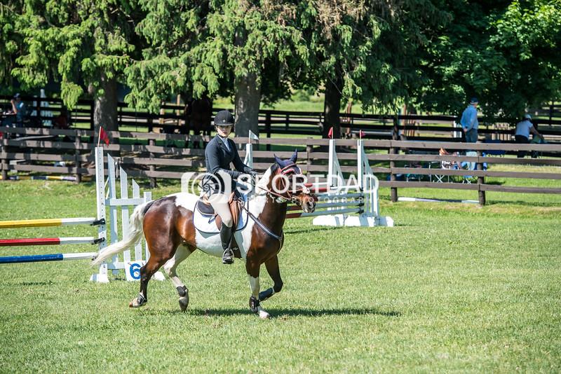 SPORTDAD_equestrian_0735