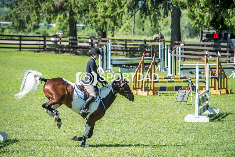 SPORTDAD_equestrian_0726