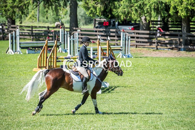 SPORTDAD_equestrian_0730
