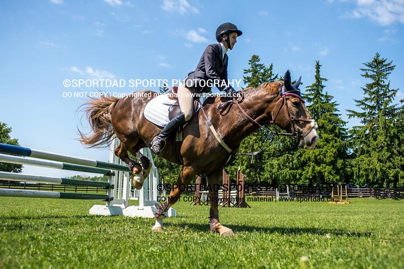 SPORTDAD_equestrian_7773