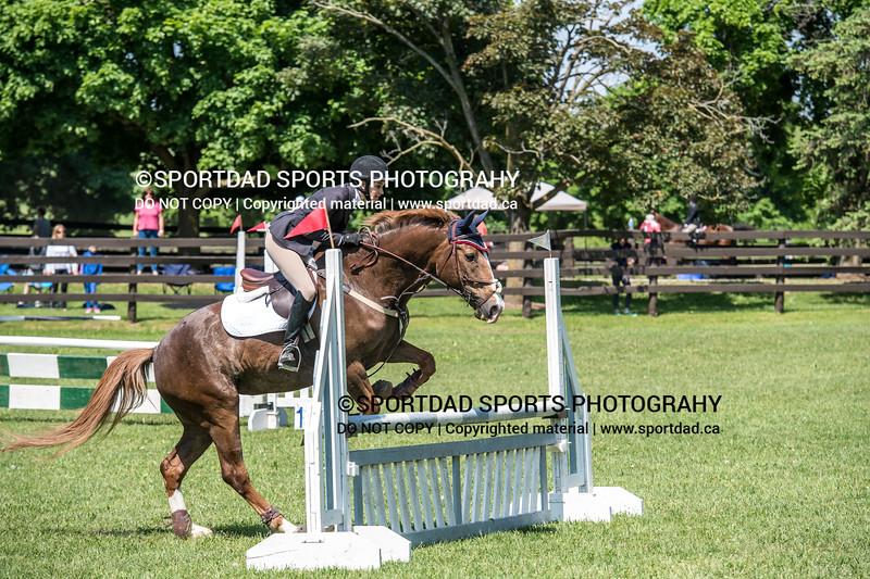 SPORTDAD_equestrian_0919