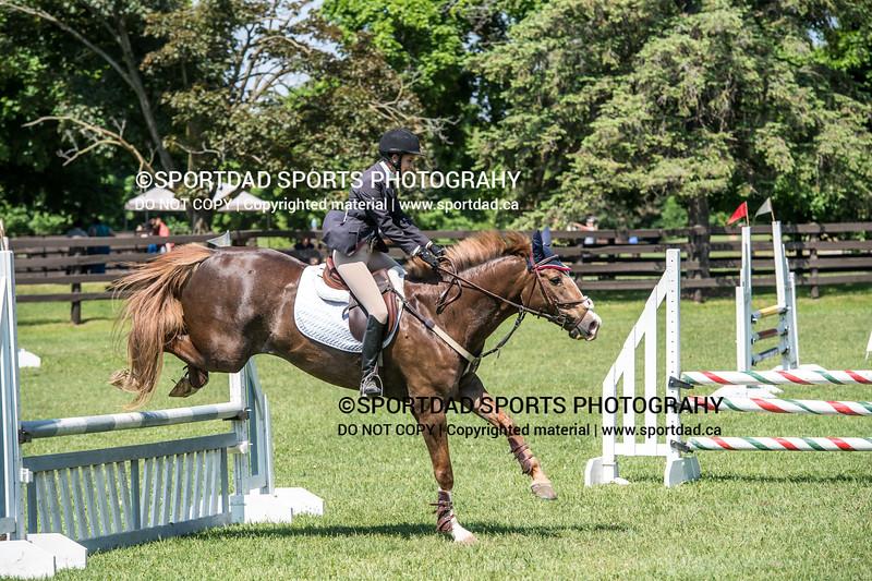 SPORTDAD_equestrian_0923