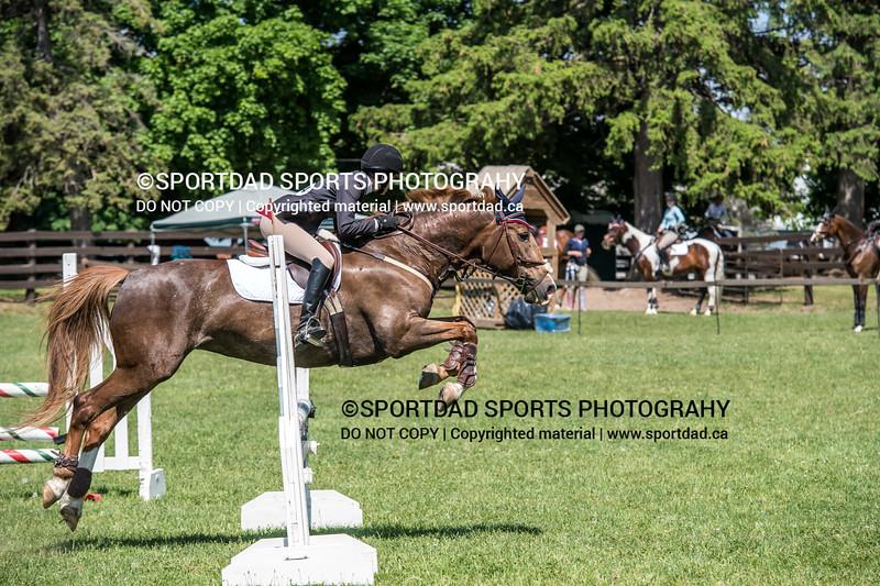 SPORTDAD_equestrian_0928