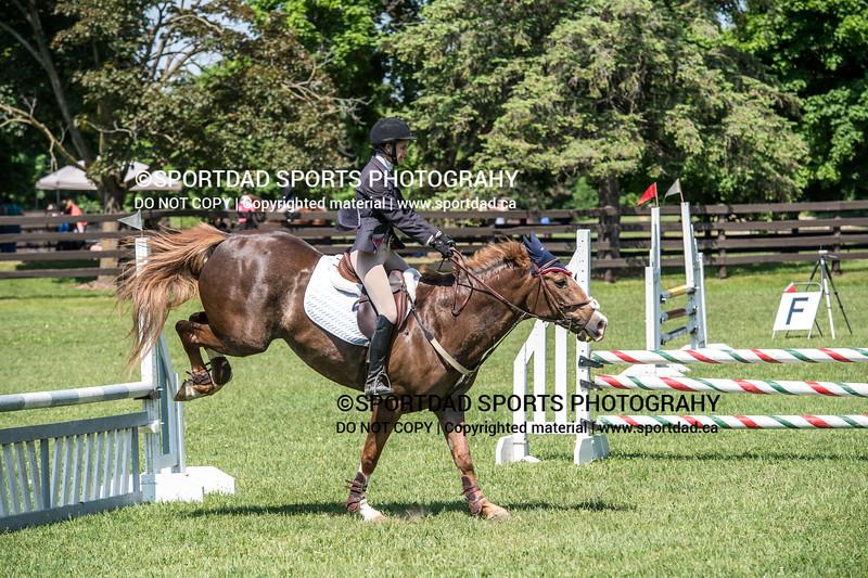 SPORTDAD_equestrian_0924