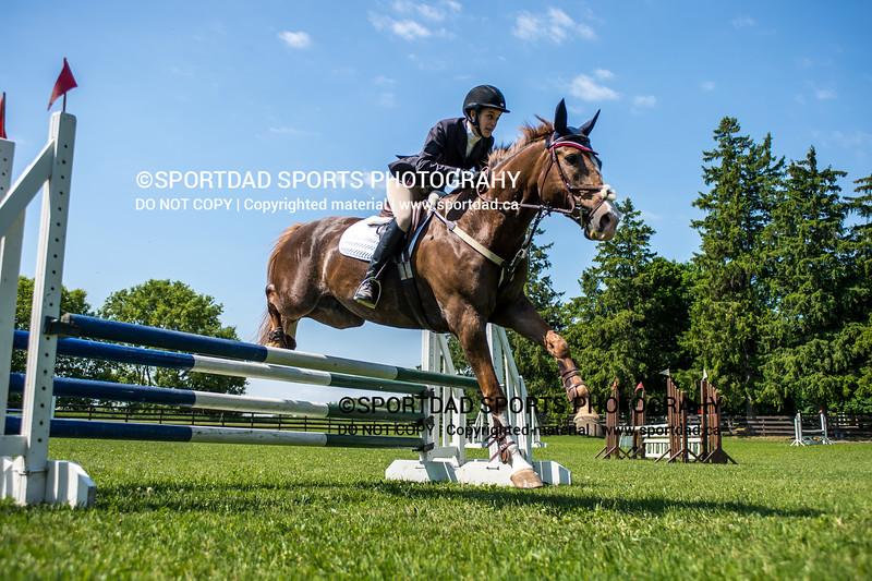 SPORTDAD_equestrian_7771