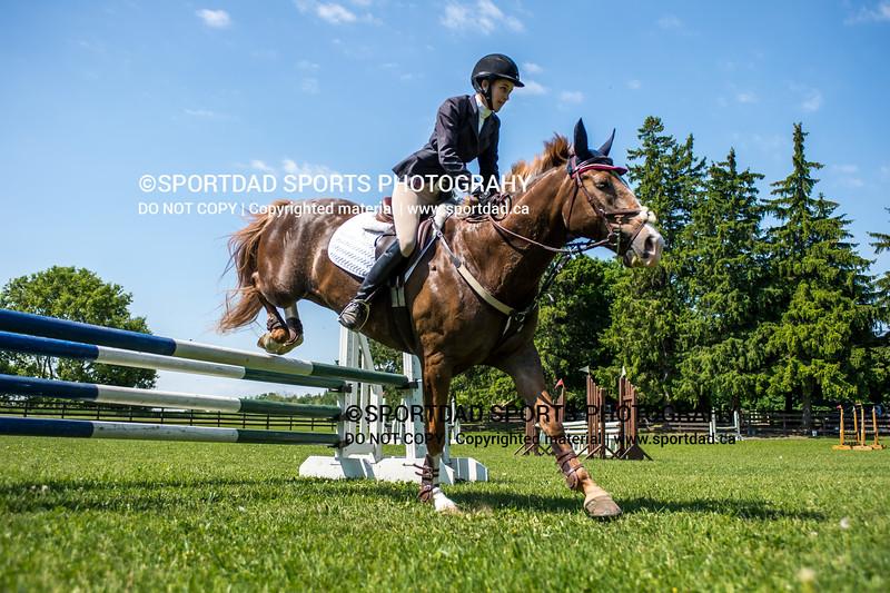 SPORTDAD_equestrian_7772