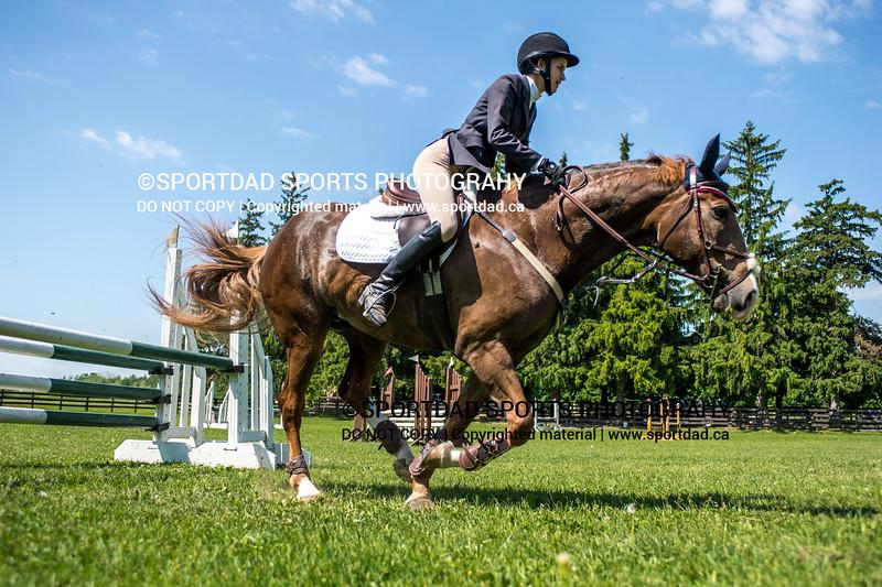 SPORTDAD_equestrian_7774