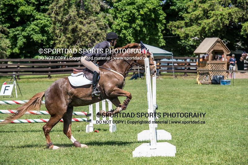 SPORTDAD_equestrian_0926