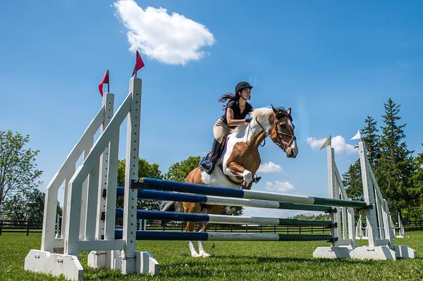 SPORTDAD_equestrian_001