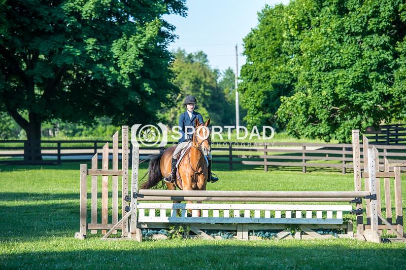 SPORTDAD_equestrian_7513