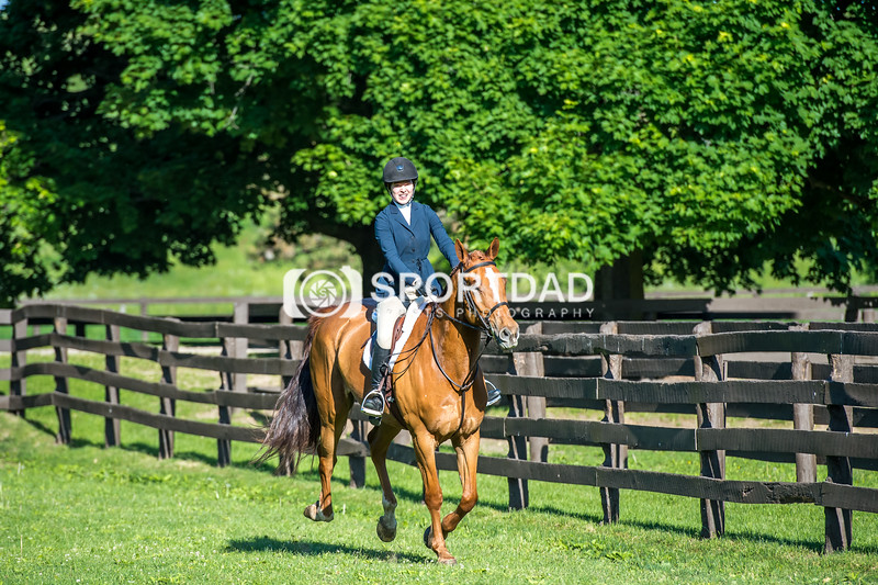 SPORTDAD_equestrian_7511