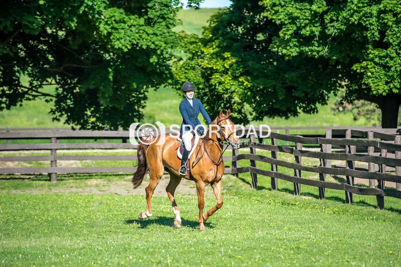 SPORTDAD_equestrian_7509