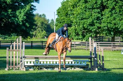 SPORTDAD_equestrian_7520