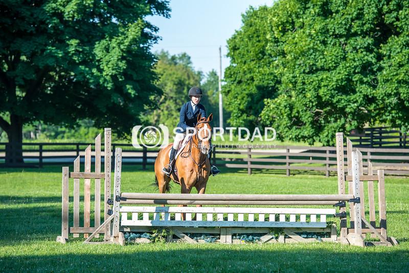 SPORTDAD_equestrian_7515