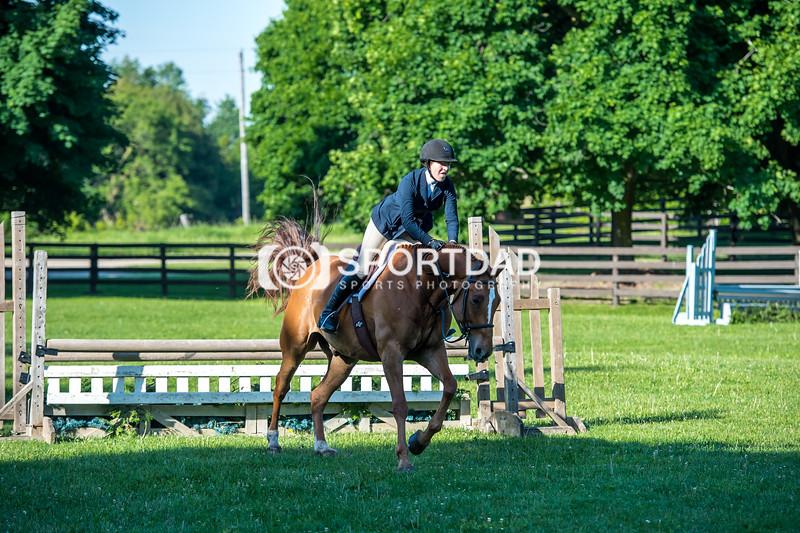 SPORTDAD_equestrian_7524