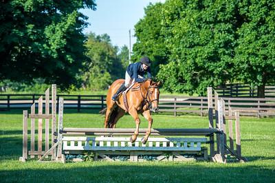 SPORTDAD_equestrian_7519