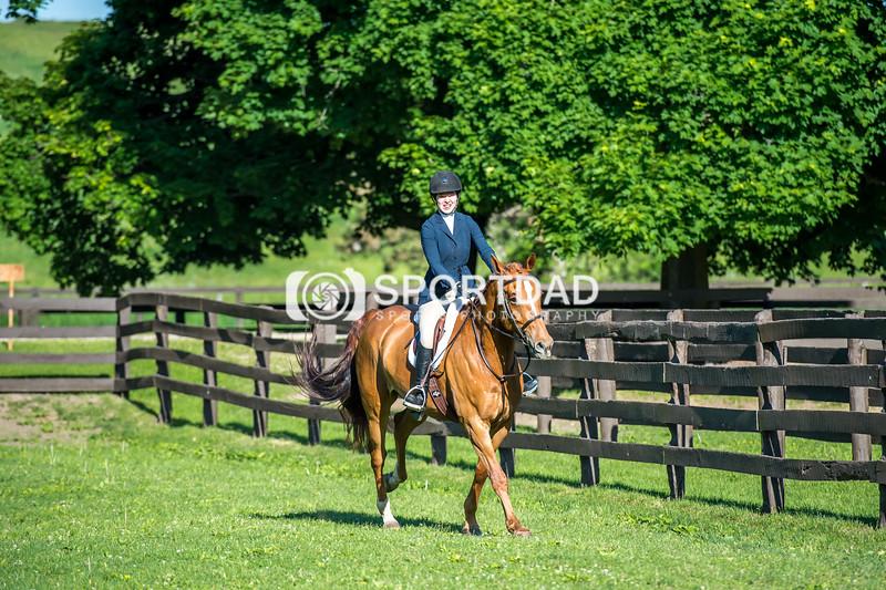 SPORTDAD_equestrian_7510
