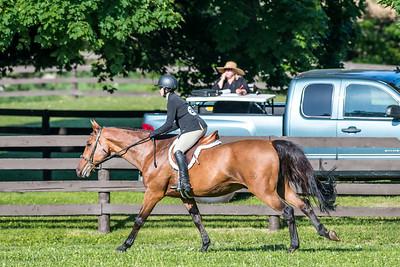 SPORTDAD_equestrian_135